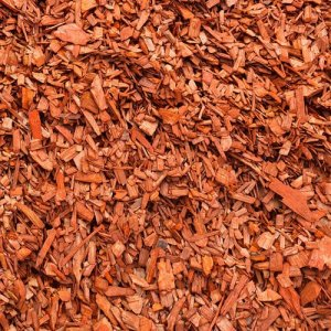 river-red-gum-chips